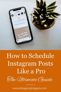 Social Media Scheduling Tools, Social Media Site, Photo Sharing Sites, Instagram Schedule, Instagram Accounts, Instagram Posts, Business Analyst, Like A Pro, Business Profile