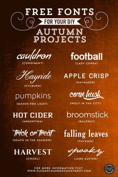 Free Fonts for DIY Autumn Projects – Volume 1 from EleganceAndEnchantment ~~ {12 free fonts w/ easy download links}