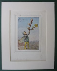 The WillowCatkin Fairy by Cicely Mary Barker by PrimrosePrints