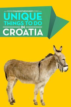 Croatia Travel Blog: This list of unique things to do in Croatia is like no other, here are a stack of travel experiences you've never had in Croatia.