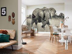 Tapete: Elephant - Die TapetenAgentur