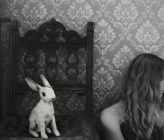 Alice in Wonderland & rabbit