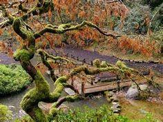 japanese garden pictures - Bing Изображения