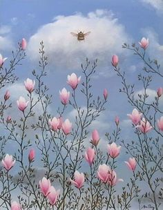 """thewoodbetween: """"""""The Essential Bee"""" by Alan Parry """" Pretty In Pink, Wild Flowers, Beautiful Flowers, Patrick Nagel, Edward Hopper, Robert Doisneau, Bee Happy, Bees Knees, Painting Inspiration"""