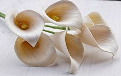 These Calla Lily flowers are fashioned from dried corn husks. Incorporate them to any floral arrangement project for a rustic flair. Flax Flowers, Calla Lily Flowers, Calla Lillies, Sola Wood Flowers, Wooden Flowers, Diy Flowers, Paper Flowers, Flower Ideas, Corn Husk Crafts