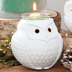 Nature's Love™ by PartyLite Mama Owl Votive Holder