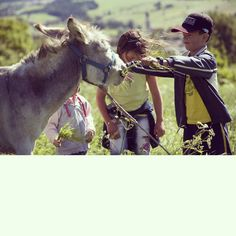 Per vivere felici, basta guardare come fanno i bambini e gli animali.