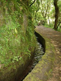 Empresa Parque Natural da Madeira