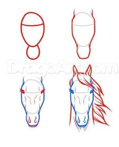 Horse Face Drawing, Easy Horse Drawing, Horse Drawing Tutorial, Horse Drawings, Pencil Art Drawings, Art Drawings Sketches, Easy Drawings, Animal Drawings, Drawing Faces