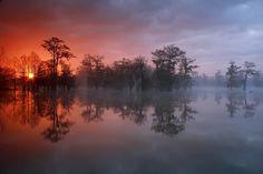 Breaux Bridges, Louisiana, USA  Swamp Star (by Ben Pierce Photography)