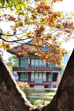 경복궁    한국의 아름다운 고궁 Gyungbokgung, Beautiful Korean Palace