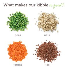 V-dog kibble is made in California with healthy yummy whole foods like peas lentils oats and flax . Vegan Dog Food, Vegetarian Dog Food Recipe, Vegan Vegetarian, Dog Nutrition, Plant Based Nutrition, Proper Nutrition, Complete Nutrition, Whole Food Recipes, Dog Food Recipes