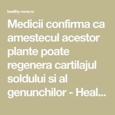 Medicii confirma ca amestecul acestor plante poate regenera cartilajul soldului si al genunchilor - Healthy Zone Arthritis Remedies, Math Equations, Healthy, Macarons, Plant, Macaroons, Health