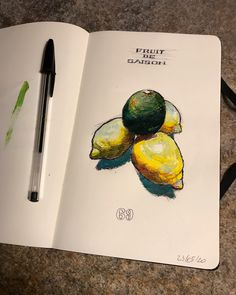 Ball pen and acrylic on Inspired by a couple of lemons Moleskine, Goal, Ocean, Couple, Photo And Video, Inspired, Drawings, Painting, Inspiration