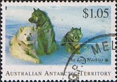 Australian Antarctic Territory 1994 Huskies Fine Used SG 107 Scott L93 Other Australian Antarctic territory Stamps HERE