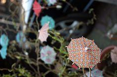 umbreluta