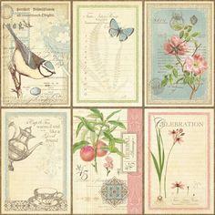 """Diseñador de papel """"Tea Botánico - Notas de Amor"""", 30,5 x 30,5 cm"""