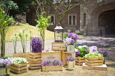 Flowers ... crates ... lanterns