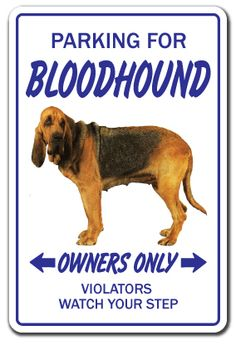 Bloodhound Parking Only
