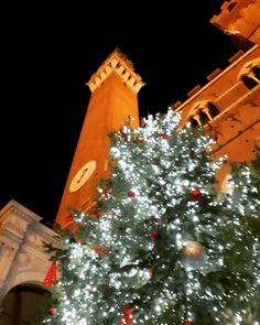 Piazza del Campo -Natale 2017- Siena
