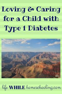 Loving and Caring for a Child with Type 1 Diabetes What Causes Diabetes, Diabetes Diagnosis, Type 1 Diabetes, Diabetes In Children, Life Happens, Daily Activities, Mom, Homeschooling, Vegetarian