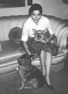 Ava Gardner and her corgi's