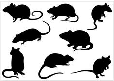 Rat Silhouette Clip Art Pack Template - ClipArt Best - ClipArt Best