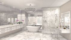 Transitional Master Bathroom with Handheld Shower Head, Complex marble counters…