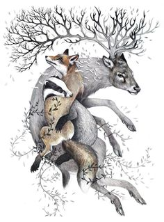 """""""Protect Wildlife"""" -by Kate Louise Powell from the Sheppard Collection Of Vegan Art www.sheppardcollection.org.uk"""