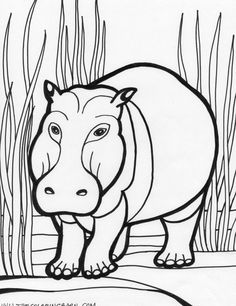 Animal Coloring Pages Anteater Anteater 3 coloring page Kyles