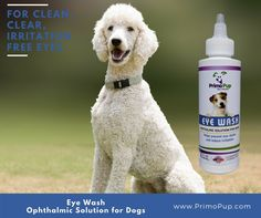 Reduce eye irritation and gently clean fur around the eyes.