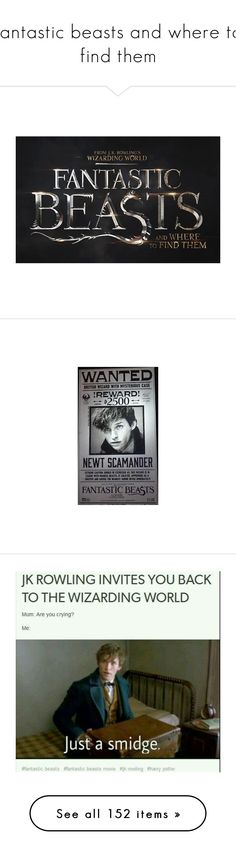 """""""fantastic beasts and where to find them"""" by ninja-potter-bright ❤ liked on Polyvore featuring harry potter, fantastic beasts, fantastic beasts and where to find them, home, home decor, inspirational home decor, frames, wall art, books and quotes"""