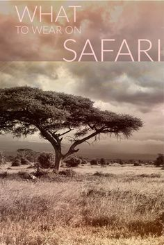 Wondering what to wear on safari in Africa? From South Africa to Kenya to Tanzania, here is the ultimate safari packing list. Kenya Travel, Africa Travel, Safari Outfits, Safari Clothes, Diani Beach, Chobe National Park, Africa Destinations, Foto Poster, Tanzania Safari
