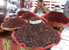 Los chapulines, un gran platillo de la gastronomía mexicana