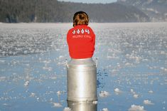 A Swiss Kid sitting on a milk can enjoying the beauty of Swiss landscape. The sweater he is wearing is a famous and favorite amongst Swiss Kids called MUMU COW. Milk Cans, Cow, Baby Kids, Canning, Sweater, Landscape, Beauty, Kids Wear, Sweater Cardigan