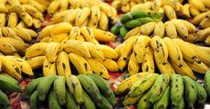 cores   As frutas estão presentes em todas as edições da Feira do Produtor Orgânico, no Parque da Água Branca, São Paulo. Obtidas sem o uso de agrotóxicos, elas vêm de cultivos familiares, em pequenas propriedades