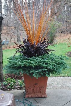 A gorgeous fall container-flame willow, died eucalyptus and evergreens. Christmas Urns, Christmas Planters, Fall Planters, Outdoor Planters, Flower Planters, Outdoor Christmas Decorations, Outdoor Gardens, Outdoor Decor, Winter Container Gardening