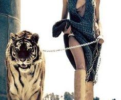 Walk a tiger down the street.