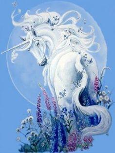 Unicorn And Fairies, Unicorn Fantasy, Unicorns And Mermaids, Unicorn Horse, Unicorn Art, Unicorn Makeup, Magical Unicorn, Mythical Creatures Art, Mythological Creatures