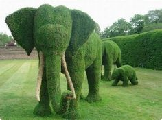 """Amazing garden full of topiary sculptures. Amazing garden full of topiary sculptures. - Art, Creative - Check out: Amazing """"Fairy Tale"""" Garden on Barnorama Deco Elephant, Elephant Family, Elephant Love, Elephant Artwork, Funny Elephant, Elephant Images, Elephant Theme, Elephant Ears, Elephant Gifts"""