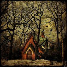 birds, cottage, deep, eerie, enchanted, forrest