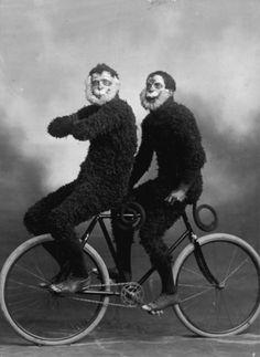 Monkeys on a Bicycle      Via katia-lexx