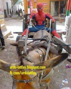 Urdu Latifay: Funny Photos, Spider Man at Chand Gari, Spider Mai...