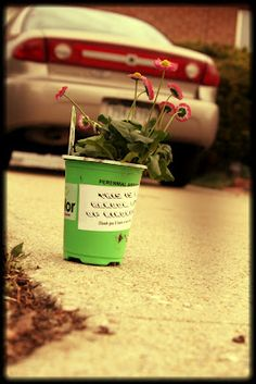 WhiMSy love: 37 Random Acts of Kindness  <-- creative + inspiring!