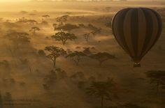 A hot air balloon takes safarigoers on an early morning flight over the Serengeti plains. The Serengeti National Park is miles of preserved wilderness, and home of the famed wildebeest migration. The wildebeest migration is roughly 2 million strong Karen Blixen, Balloon Rides, Hot Air Balloon, Tanzania Safari, Air Tanzania, Serengeti National Park, Out Of Africa, East Africa, African Safari