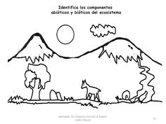 Las 53 Mejores Imágenes De Ecosistemas Ciencia Natural