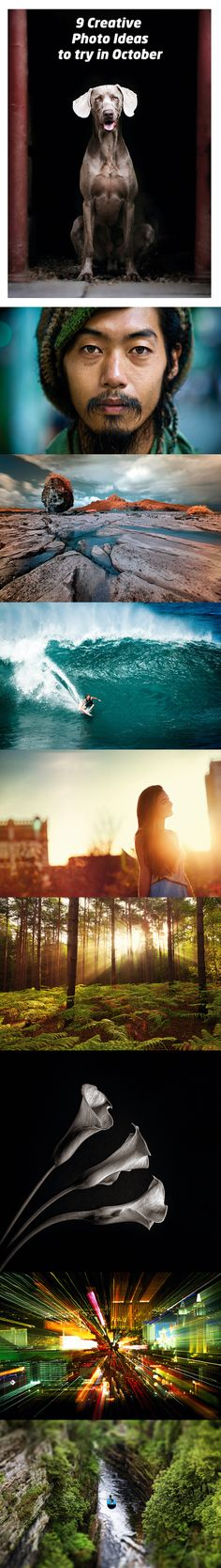 9 creative photo ideas to try in October: photo projects you can do right now to add some inspiration to your portfolio
