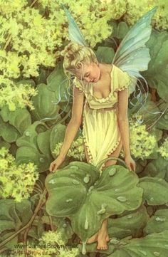 Dew Faery 8.5x11 Signed Print by brownieman on Etsy, $11.50
