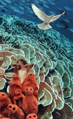 Still waters run deep Soul Collage cards Julie Howlin