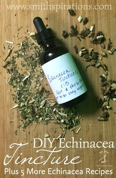 DIY Echinacea Tincture, Plus 5 More Echinacea Recipes Making an echinacea tincture is a very easy process that requires little more than a few ingredients, a jar, and a kitchen scale. Plus, get 5more useful echinacea recipes in this post!